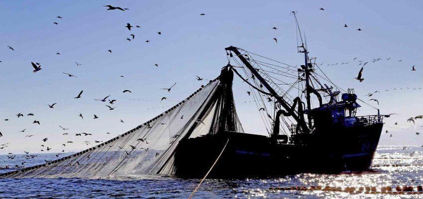 Resultado de imagen para pesca industrial